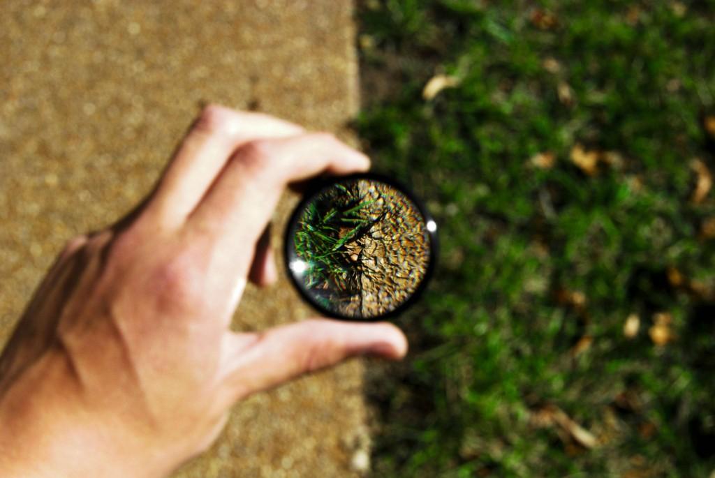 looking through a macro filter