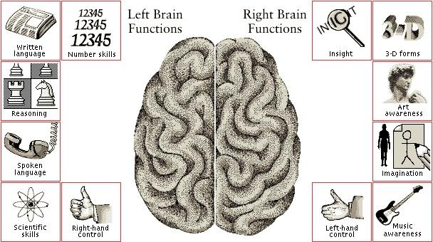 Right-Brain-vs-Left-Brain-Function