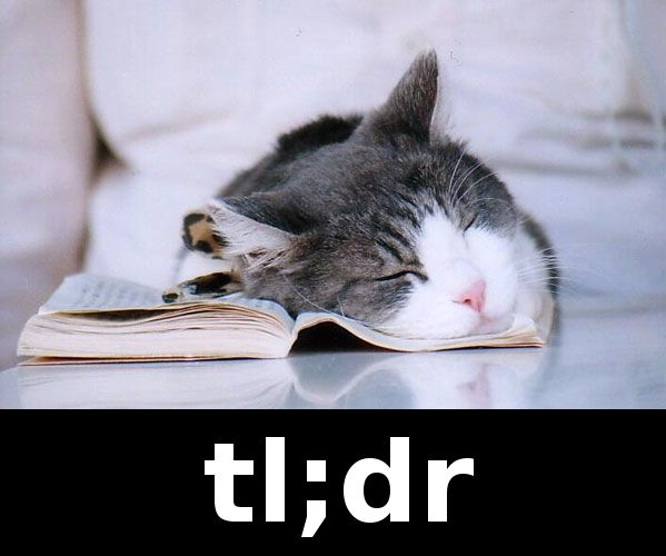 TL;DR cat meme