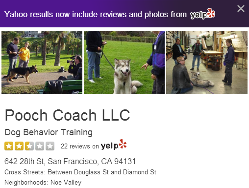 A screenshot of Pooch Coach's current Yahoo Local listing