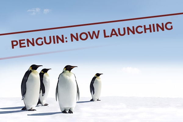 penguin-now-launching