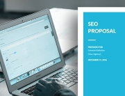 Win More Clients with This SEO Proposal