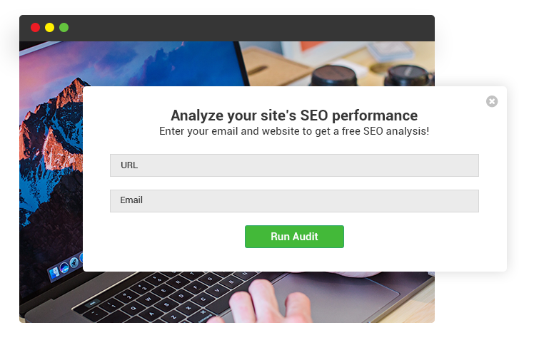 Web Audit Widget