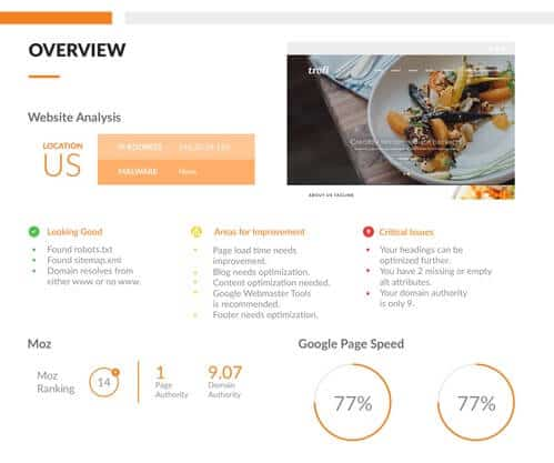 Web Audit Report