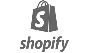 SEO Services For Shopify