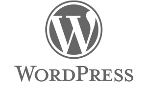 SEO Services For WordPress
