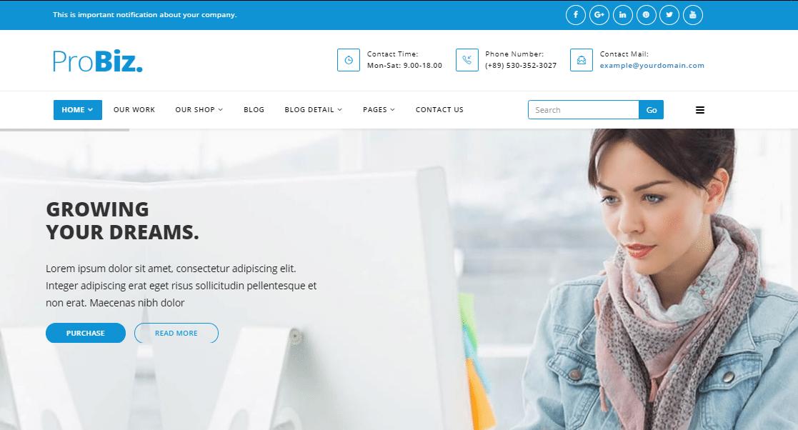 ProBiz Small Business WordPress Theme